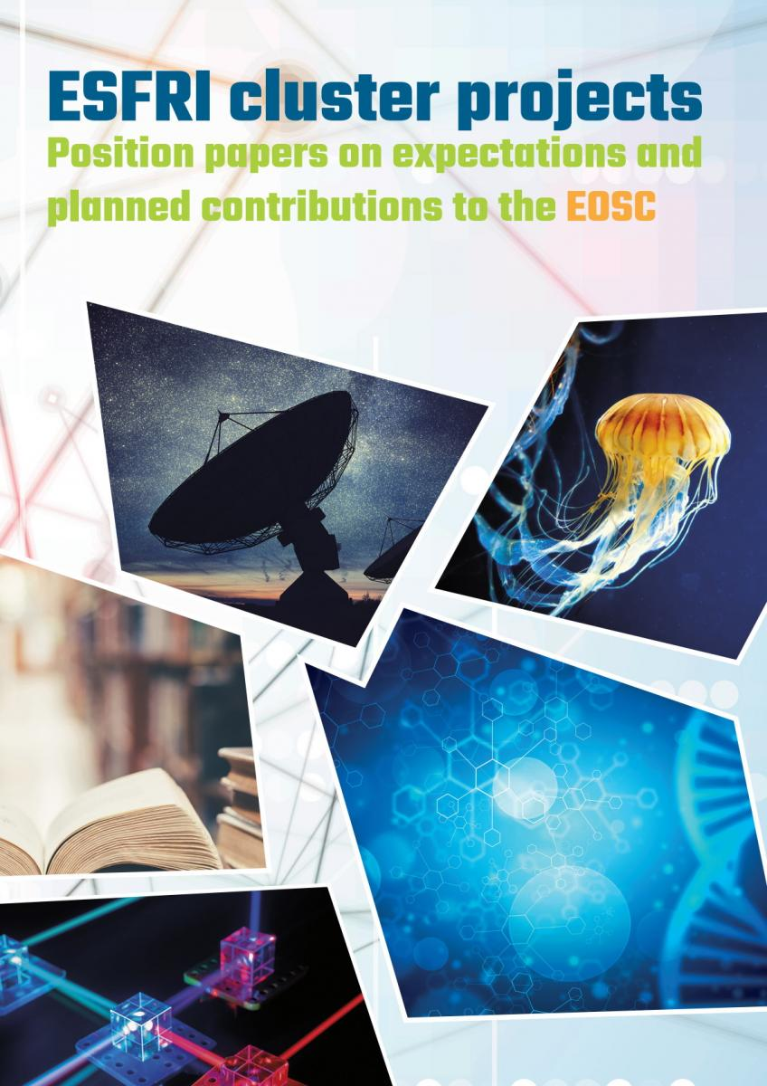 ESFRI Cluster Projects Position Papers Booklet